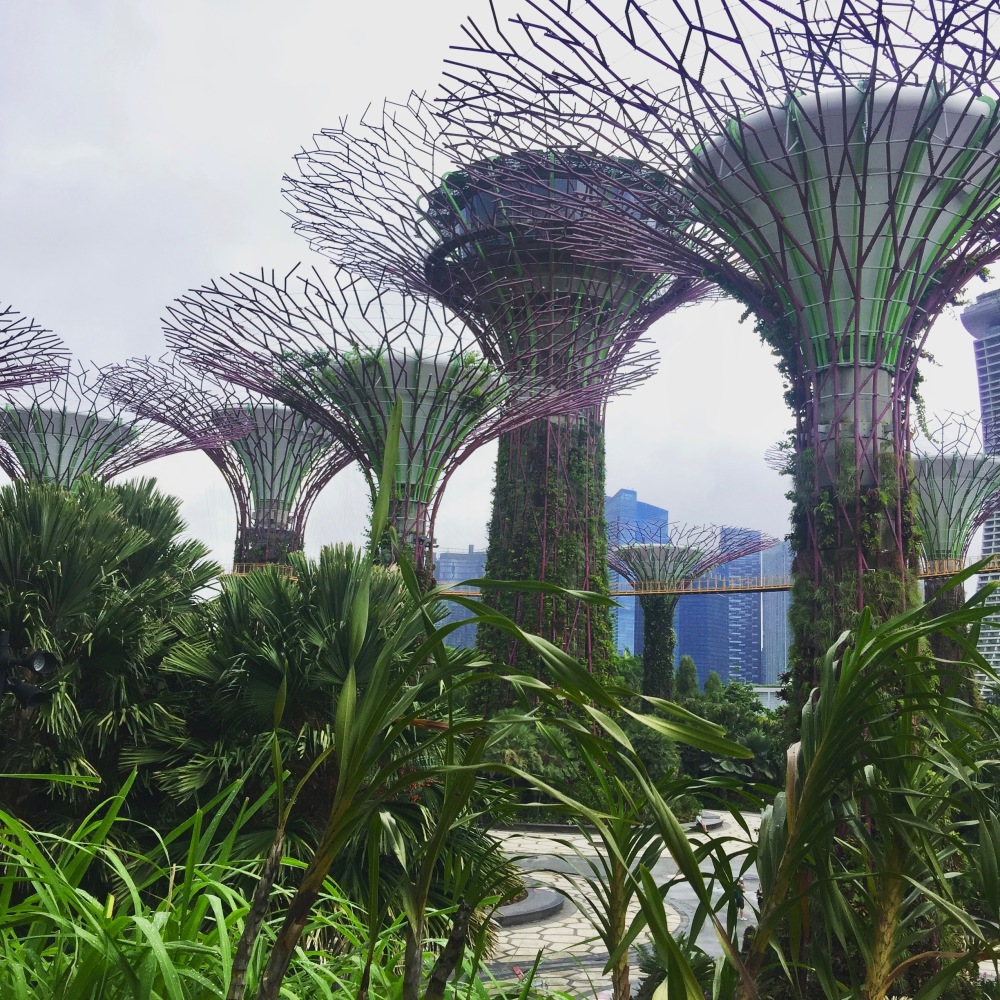 Singapore Garden by the bay Food-trotter